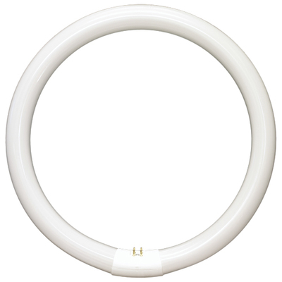 TUBE T9 156MM CIRCULAR 22W INSECTOCUTOR
