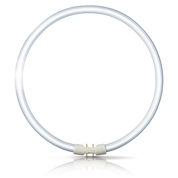 TUBE TL5 299MM DIAM CIRCULAR 55W 840